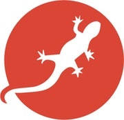 Logo Digitalsalamander